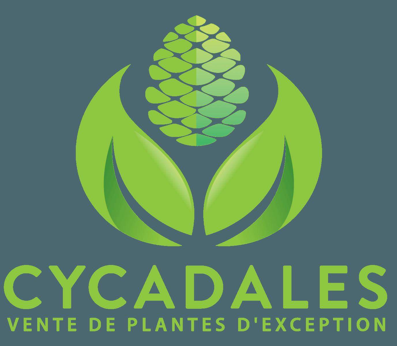 Cycadales